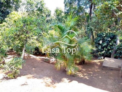 Casa à venda com 3 dormitórios em Contorno, Ponta grossa cod:1947 - Foto 13