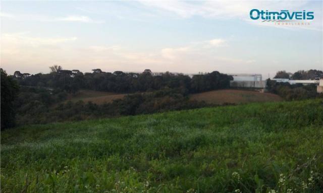 Área à venda, colônia zacarias, são josé dos pinhais - ar0002.