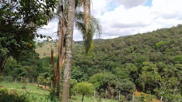 Fazenda 80 Ha Pitangui - Foto 4