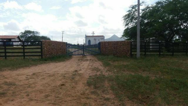 Fazenda Fernando Pedrosa, 489 Hectares, Escriturada, 7km Rio Pajeú, Açude, Casa Sede - Foto 12