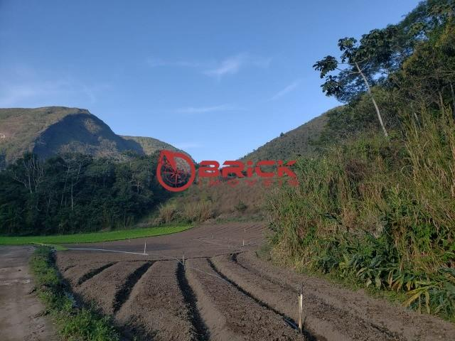 Maravilhosa fazenda com excelente potencial comercial em albuquerque. - Foto 2