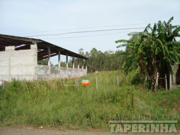 Terreno para alugar em Camobi, Santa maria cod:5496