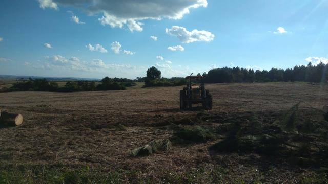 234 Hectares - 97 Alqueires - Planta 52 Alqueires - Palmeira - Foto 7