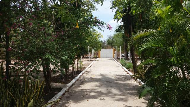 Chácara 50ha Piscina PI-113 10km de José de Freitas - Foto 12