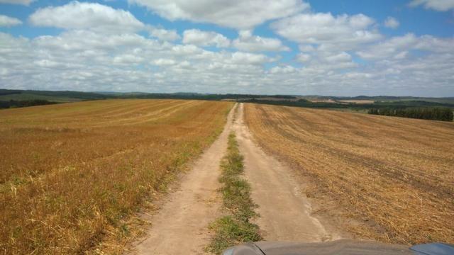 580 Hectares - 240 Alqueires - Fazenda Sede - Lapa - Foto 10