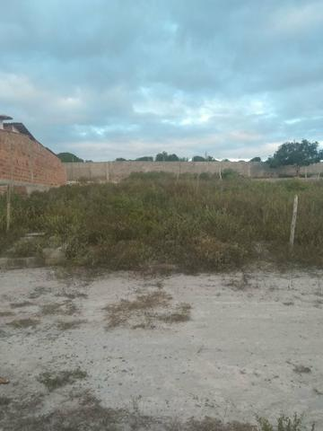 Terreno na Matinha Tam 5x20- Preço imperdível - Foto 5