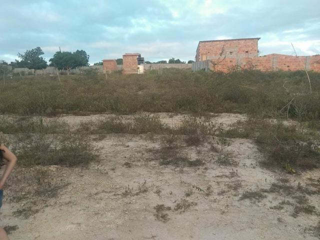 Terreno na Matinha Tam 5x20- Preço imperdível - Foto 2
