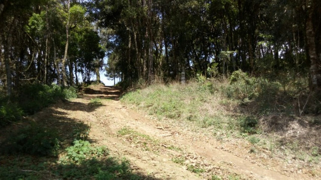 Terreno chácara vendo ou troco - Foto 4