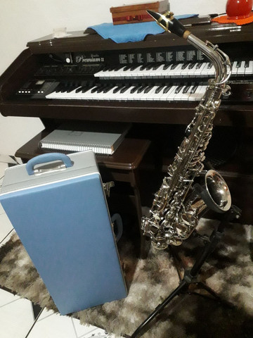 Sax saxofone alto Eagle sa 500 novinho zerado lindo