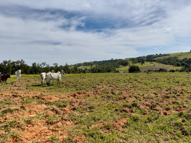*GS* Terreno com 500m2º excelente topografia à venda em Araçoiaba da Serra  - Foto 6