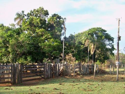 Chácara Aragoiânia, 14,65 alqueires, (71,71 hectares), - Foto 7