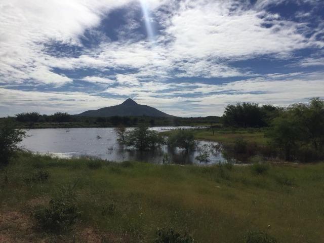 Fazenda Fernando Pedrosa, 489 Hectares, Escriturada, 7km Rio Pajeú, Açude, Casa Sede - Foto 6