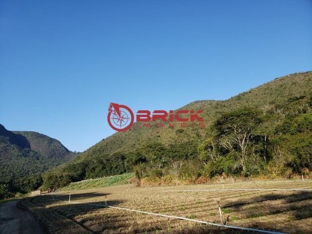 Maravilhosa fazenda com excelente potencial comercial em albuquerque. - Foto 11