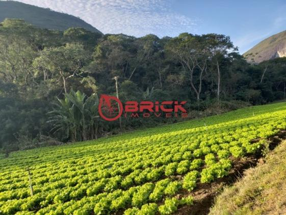 Maravilhosa fazenda com excelente potencial comercial em albuquerque. - Foto 7