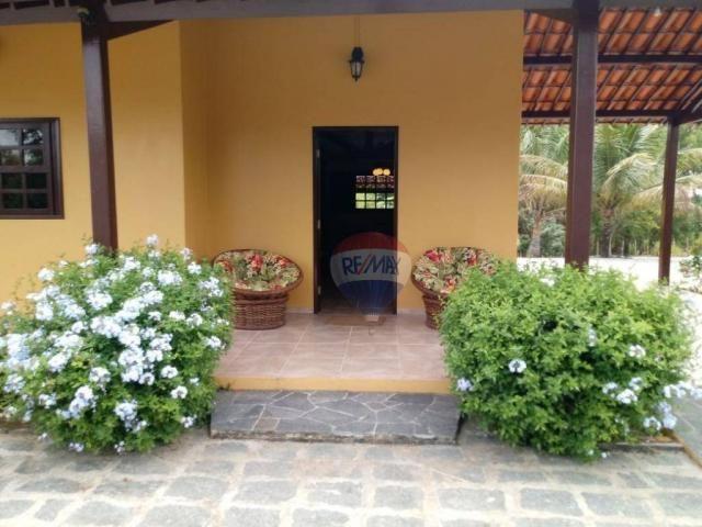 Chácara com 2 dormitórios à venda, 20000 m² por r$ 480.000 - insurreição - sairé/pe - Foto 5