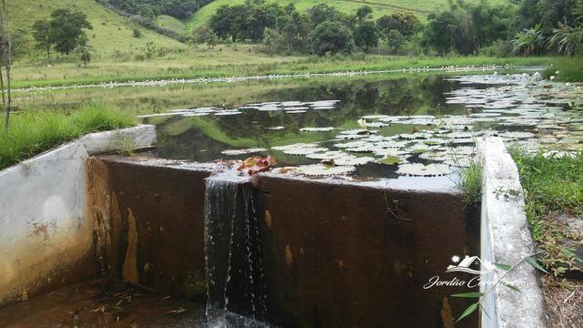 Jordão corretores - Fazendinha leiteira Cachoeiras de Macacu - Foto 9