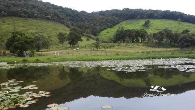 Jordão corretores - Fazendinha leiteira Cachoeiras de Macacu - Foto 6