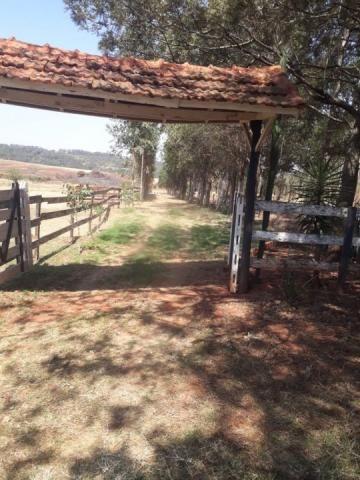 8062 | Chácara à venda em Chácara Marrom, Astorga - Foto 6