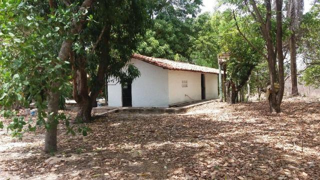 Chácara 50ha Piscina PI-113 10km de José de Freitas - Foto 11