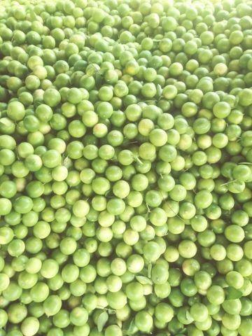 Limão 22 kg R$:16,00