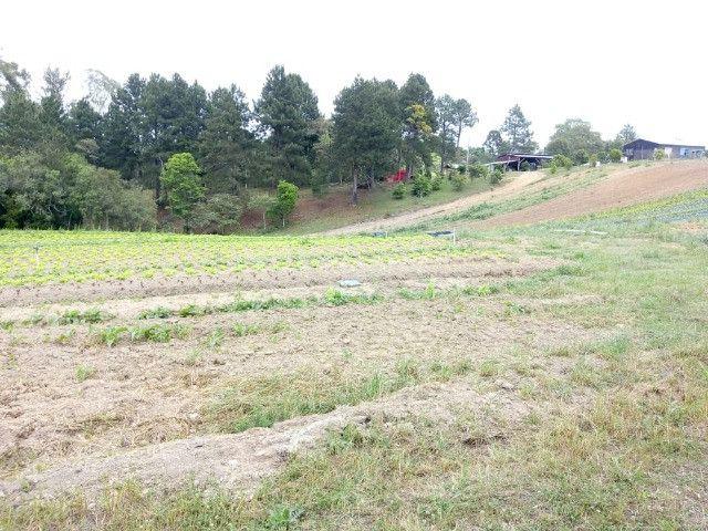 Chácara Linda na Fazenda Rio Grande PR - Foto 8