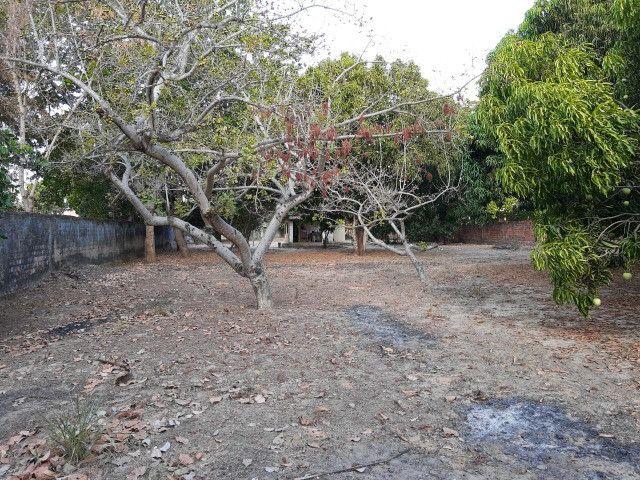 Sitio em Codó-Ma - Foto 13