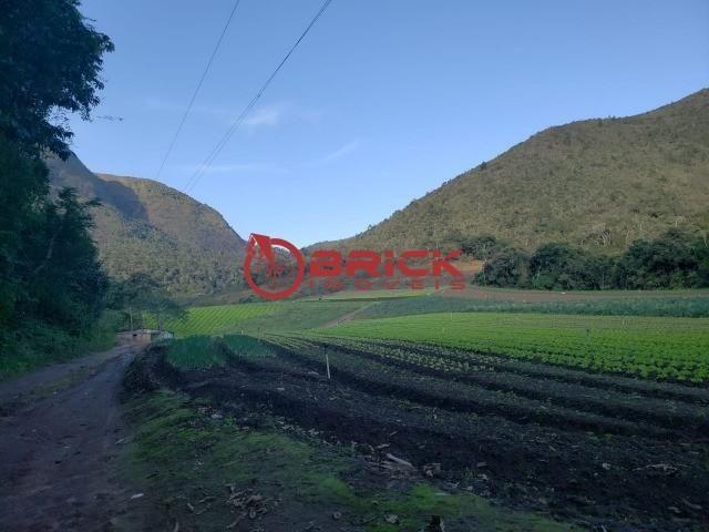 Maravilhosa fazenda com excelente potencial comercial em albuquerque. - Foto 5