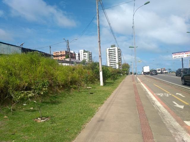 D206 Terreno na Avenida Marcio Canuto /Barro duro - Foto 13