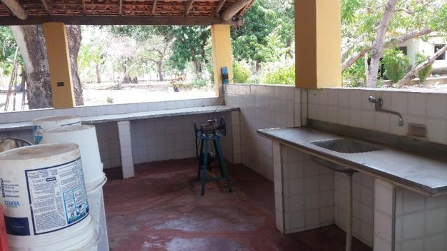 Chácara 50ha Piscina PI-113 10km de José de Freitas - Foto 9