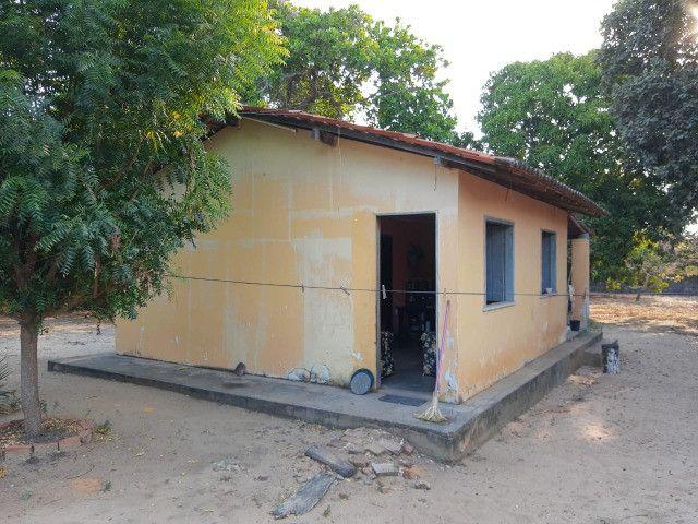 Sitio em Codó-Ma - Foto 6