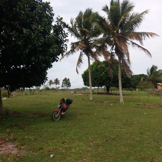 Sítio - Ilha Preta - Foto 2