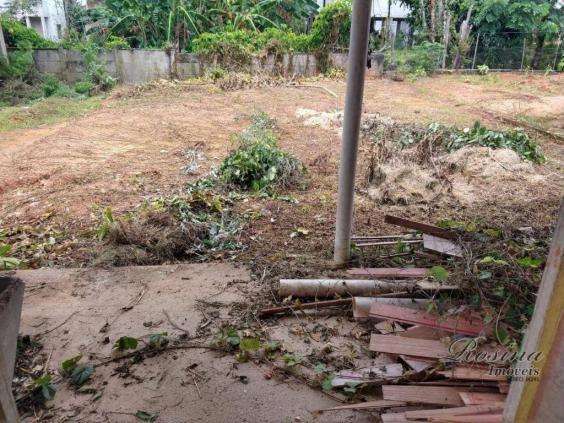Terreno à venda, 215 m² por R$ 65.000,00 - Centro - Morretes/PR - Foto 6