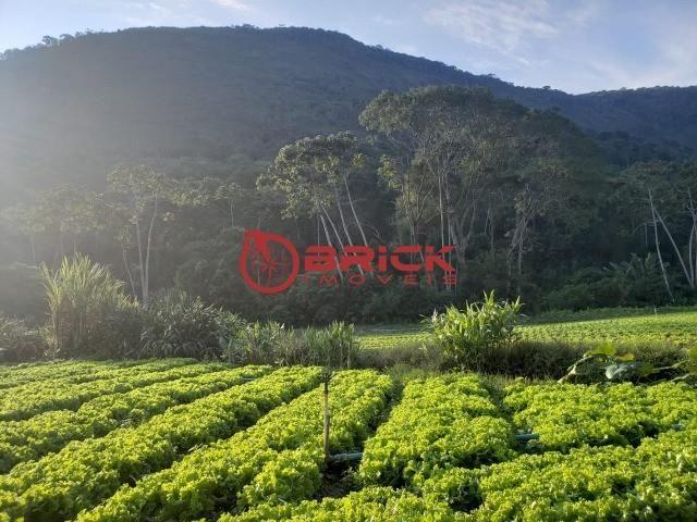 Maravilhosa fazenda com excelente potencial comercial em albuquerque. - Foto 14