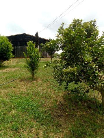 Chácara Linda na Fazenda Rio Grande PR - Foto 2