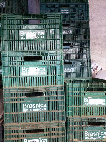 Caixas plástica para verduras! - Foto 3