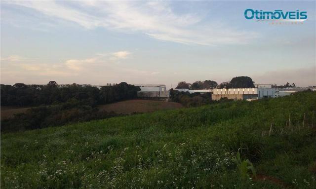 Área à venda, colônia zacarias, são josé dos pinhais - ar0002. - Foto 14