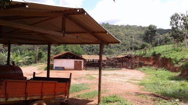 Fazenda 80 Ha Pitangui - Foto 8