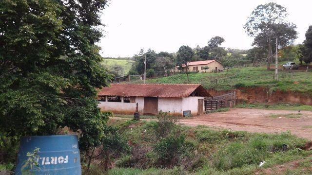 Fazenda 80 Ha Pitangui - Foto 2
