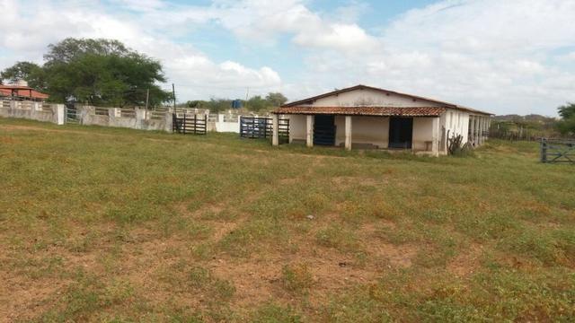 Fazenda Fernando Pedrosa, 489 Hectares, Escriturada, 7km Rio Pajeú, Açude, Casa Sede - Foto 14