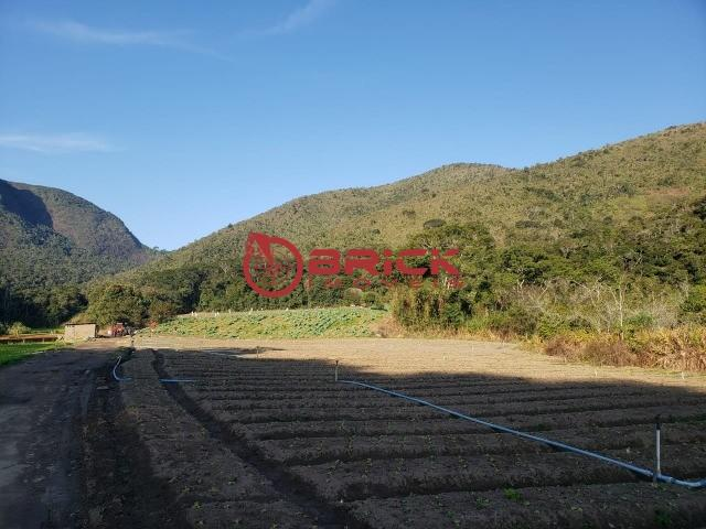 Maravilhosa fazenda com excelente potencial comercial em albuquerque. - Foto 12