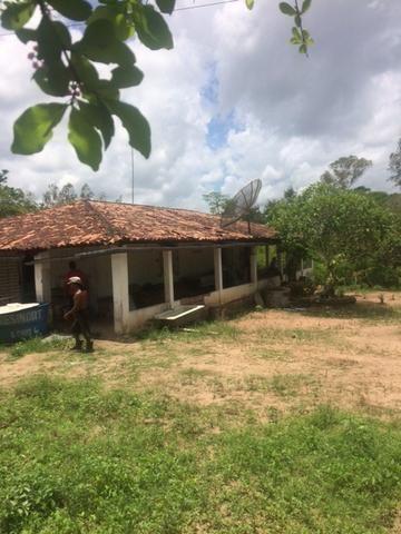 Fazenda-Granja-Sítio-Chácara 12 Hectares Aliança, Aceito Imóvel ou Automóvel - Foto 2