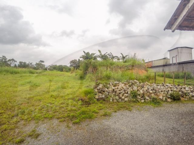 Terreno com aproximadamente 2.500 m², no bairro badenfurt . - Foto 3