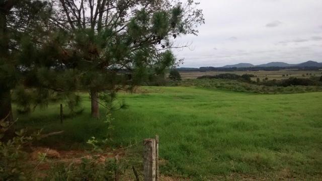 Chácara Tijucas do Sul (Tabatinga) - Foto 7