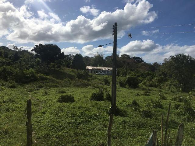 Fazenda - Barro Preto - Foto 6