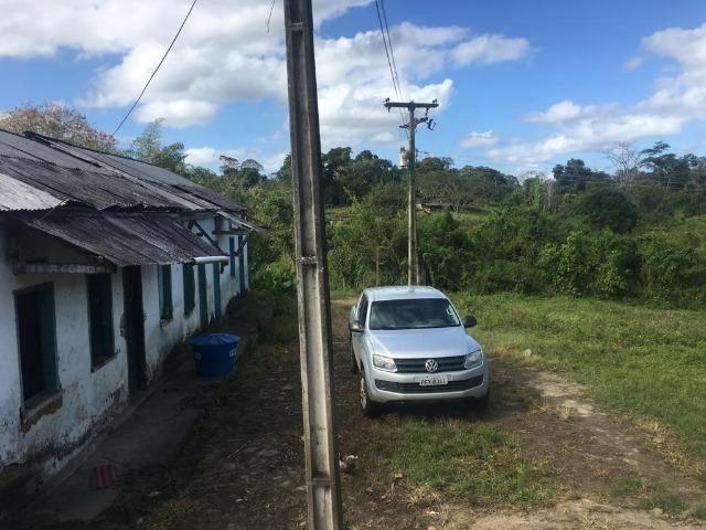 Fazenda - Barro Preto - Foto 2