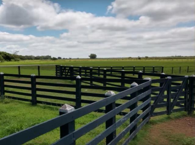 580 Hectares - 240 Alqueires - Fazenda Sede - Lapa - Foto 5