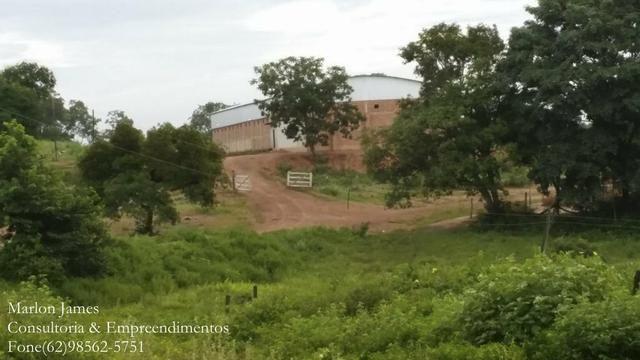 Fazenda em Porangatu!! - Foto 10