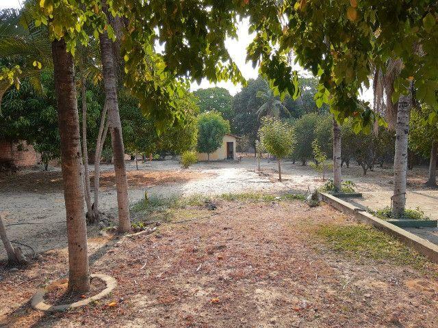 Sitio em Codó-Ma