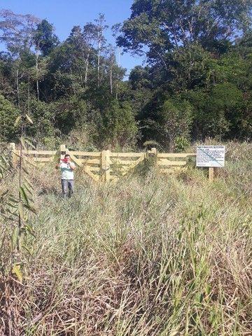 Vendo area de 248 hectareas  - Foto 3