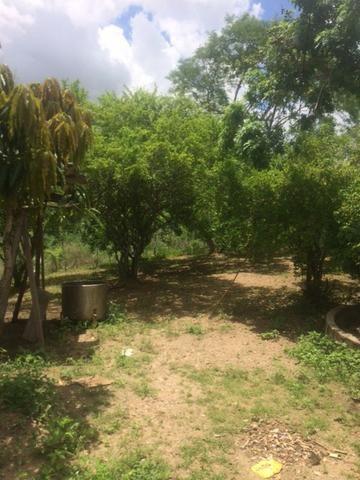 Fazenda-Granja-Sítio-Chácara 12 Hectares Aliança, Aceito Imóvel ou Automóvel - Foto 5